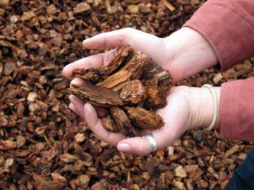 Мульчування корою дерева