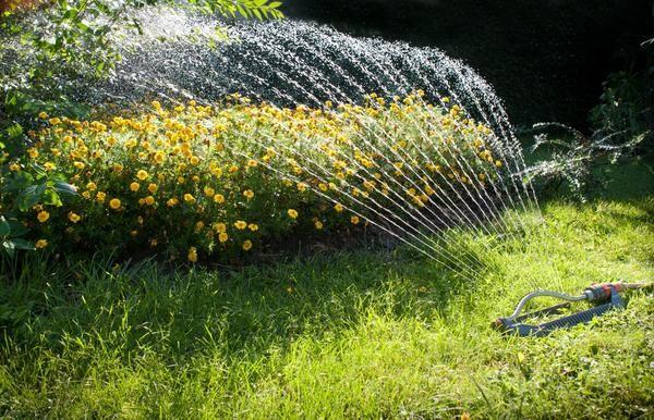 Насос на дачі і для поливу стане в нагоді, і фонтан спорудити допоможе