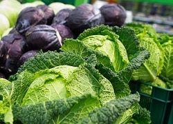 Незамінна користь капусти: що встановили вчені?