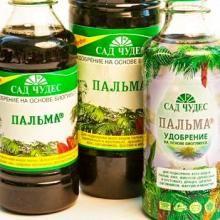 Спеціальне добриво для пальм підійде і для цитрусових