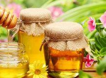 Про користь меду і бджіл у вашому саду