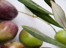 Оливки врятують від зайвих кілограмів