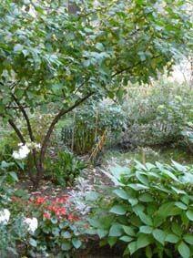 У білих хмарах квітучого саду