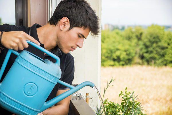 Не слід використовувати для поливу водопровідну воду прямо з-під крана