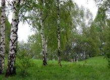 Особливості російського саду