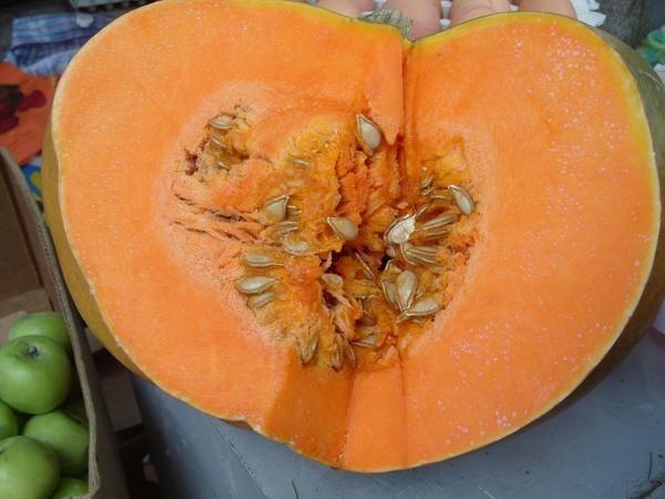 Овоч листопада - гарбуз