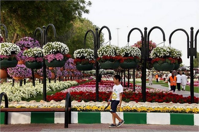 парк Мускау