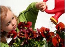 Подаруйте дитині сад!