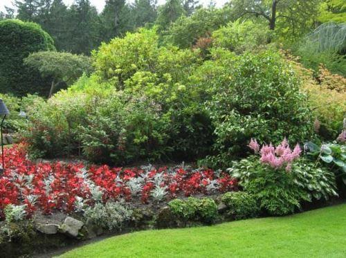 Підбір рослин в стилі giardino segreto