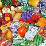 Купівля насіння квітів