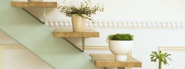 Полку для кімнатних рослин