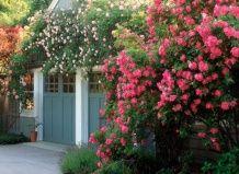 Чи підвищує сад вартість будинку?