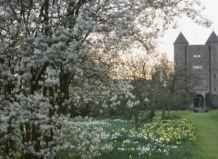 Прекрасний сад сісінхерст