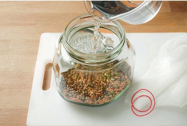 Насіння: 70 г суміші насіння покладіть в широку скляну банку і залийте холодною водою.