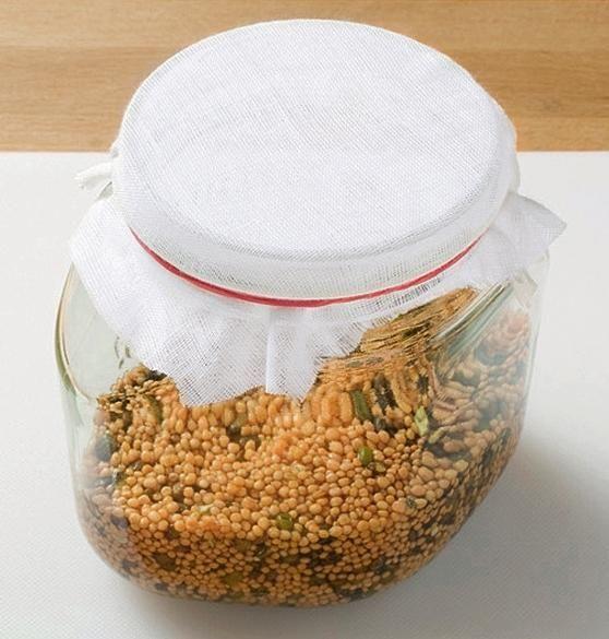 Закрийте банку на час пророщування тонкою тканиною. Тканина закріпіть аптечною гумкою.