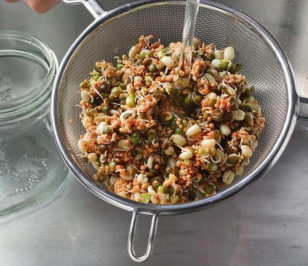 Готові до вживання насіння відкиньте на сито і промийте ще раз холодною водою.