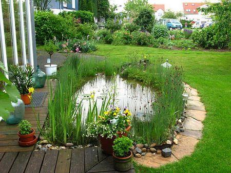 Сад подружжя, туї, сосни, магонии