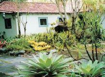 Роберту бурле маркс - ландшафтний архітектор або приборкувач диких рослин