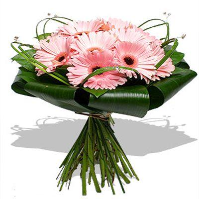 Рожеві гербери прекрасні квіти для складання букета