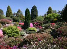 Сад леонардслі
