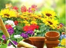 Садова терапія