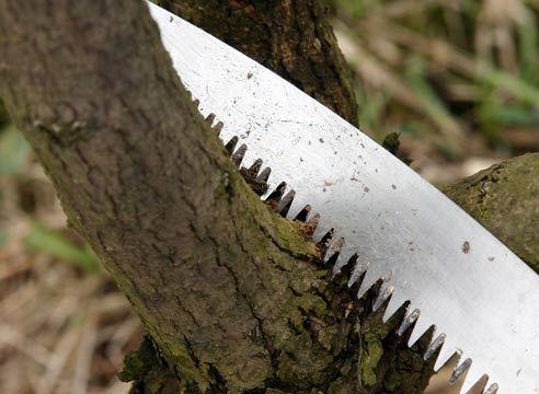 обрізка ножівкою