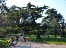 Сади і парки італії весняний парк семпіоне в мілані
