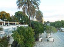 Сади і парки севільї