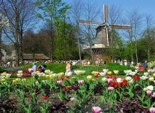 Найкрасивіший весняний парк в світі