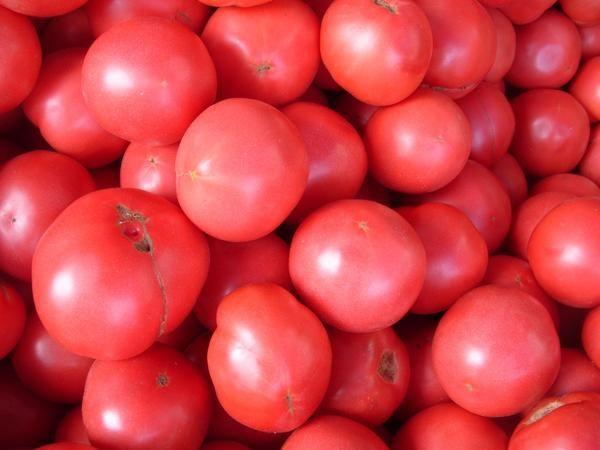 Синьйор помідор