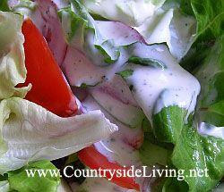 Свіжий овочевий салат, заправка