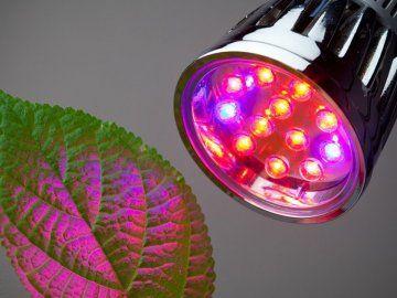 Світлодіодний світильник для рослин