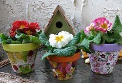 Квіткові горщики: від класики до африканського стилю