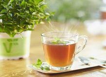 Трав`яні чаї для зимового насолоди