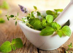 Трави і ефірні масла від лупи