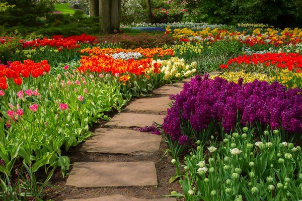 Догляд за садовими доріжками: ремонт та реставрація