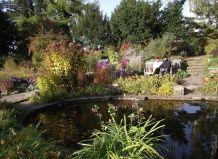 Втоплені сади