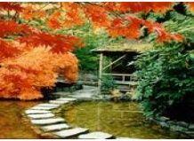 Пишність саду батчарт