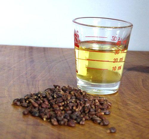 Виноградна олія корисні властивості і протипоказання