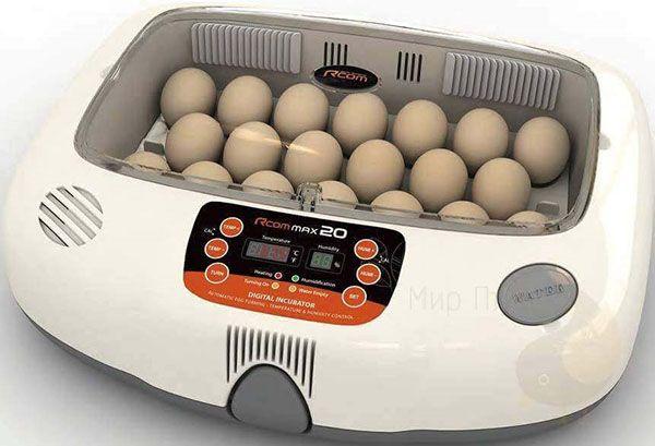 Вибір автоматичних інкубаторів для курячих яєць