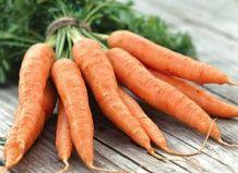 Вирощування корисного коренеплоду моркви - морква на Ваш Сад