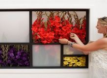 Виставка квітів у гемптон корт