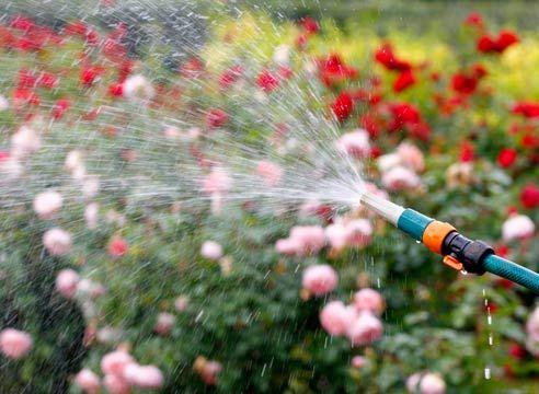 Заміське водопостачання: садові насоси