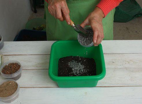 Підготовка грунтосуміші для заміокулькаса