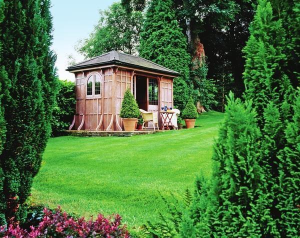 Зеленішою не буває, або 5 питань про газоні
